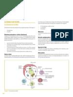 23. Fisiología humana.pdf