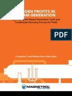 41-298.2 SteamGen White Paper