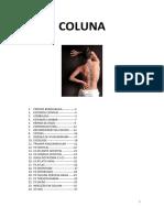 COLUNA.pdf