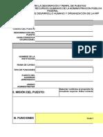 Formato Desc Perfil Apf 3007201