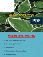 PLANT NUTRITION PRESENTATION