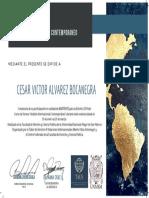 CERTIFICADO Seminario Temas de Derecho Internacional 30 (1)