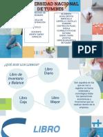 DIAPOSITIVAS LIBRO DIARIO.pptx
