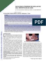 Revista odontologia forense