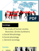 The Self, Society & Culture for Posting