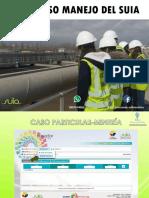 Registro Ambiental Mineria (1)
