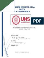 Cancer en El Peru Analsiis
