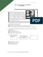 Evaluación N°2 (Intensivo) Lenguaje para 2 Año Básico (f).doc
