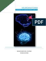 Manual de Neuroanatomía 2019