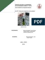Informe 3 Extraccion de Pigmentos de Las Plantas