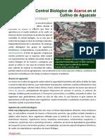 39. Control Biologico de Acaros en el Cultivo de Aguacate.pdf