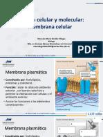Biología Membrana y Enzimas ITM (1)