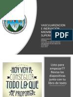 clase virtual.pdf