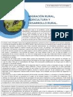 Migración Rural Ensayo