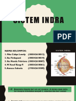 Sistem Indra (No 1)
