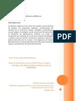 Módulo 1. Hidrocarburos alifáticos (1).pdf