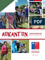 Juegos Mapuches