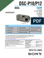 DSC-P10 level 2