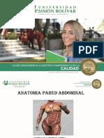 2.Anatomia, Incisiones y Abordaje Pared Abdominal (1)