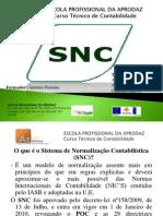 Trabalho de SNC PDF