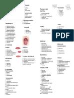 protocolo documento.docx