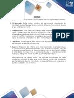 Anexo 0 - Lineamientos para Entrega de Documentos.docx
