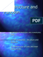 12.1 Cell Structure and Function- PP Presentation