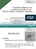 EspeciesdeFanniidaeInsecta-DipteradelValledeAburra_CONGRESO