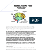 cerebro (Autoguardado)(1).docx