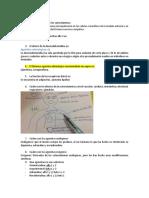 Solucion Pack Adrenergico