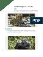 10 Most Endangered Animals