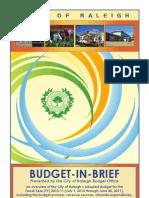 FY11 Budget in Brief CLR