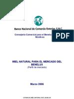 Estudio de Mercado de Miel-  BENELUX 2006