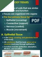 Anatomy -Tissues