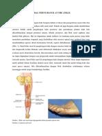 ANKLE (Sural Nerve Block)