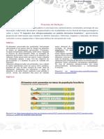 Tema - Impacto Dos Processados No Brasil