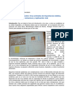 Clase 08. Generalidades Sobre Virus Animales de Importancia Médica.
