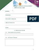 3.  Protocolo Proyecto.docx