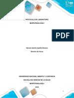 Protocolo de Laboratorio - Morfofisiología I