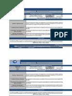 Formato Del Programa de Auditoria