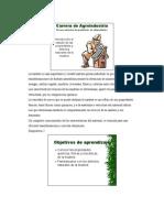 Propiedades y defectos naturales de La Madera