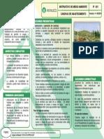 7-Canchas-de-Abastecimientos-IF-021-V4-08.14.pdf