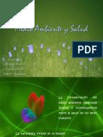 medioambienteysalud-090927165425-phpapp01