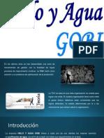 Proceso de Produccion Gobi