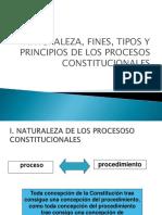 Tema 6 Disposiciones Generales de Los Procesos Constitucionales