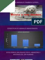 documento animales