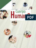Organización Del Cuerpo Humano