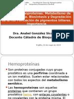 T-28 Hemoproteinas y Metab. Hemoglobina