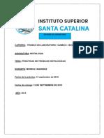 Informe Practico Tecnicas Histologicas