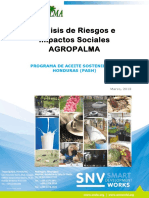 Ejemplo-Analis-de-Riesgos-e-Impactos-Sociales-Agropalma.pdf